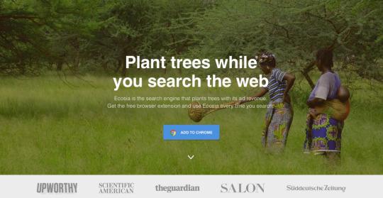 Die Macht der Vision – Lessons learned beim Aufbau des Social Business Ecosia