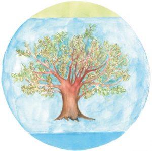 Logo Nachhaltigkeits Sommercamp 2016