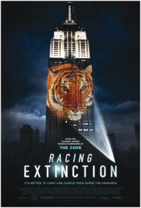 Cover des Films Racing Extintion