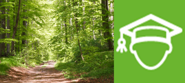 Urlaub CO2 neutral mit den Waldaktien in Mecklenburg-Vorpommern