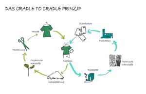 Grafische Darstellung des biologischen und des technischen Kreislaufs im Cradle to Cradle Prinzip.